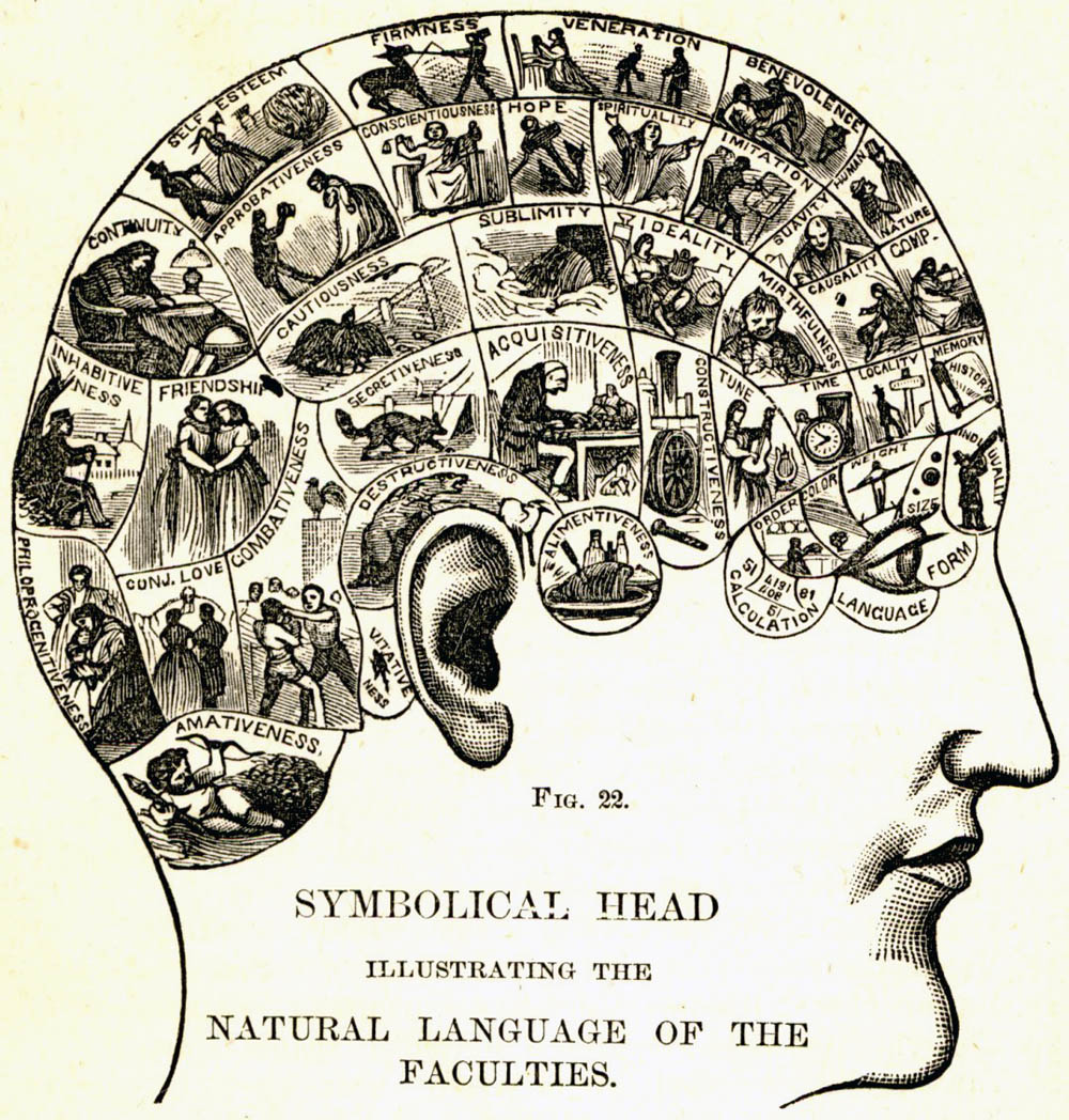 To See Wells Phrenological Chart Click On The Thumbnail