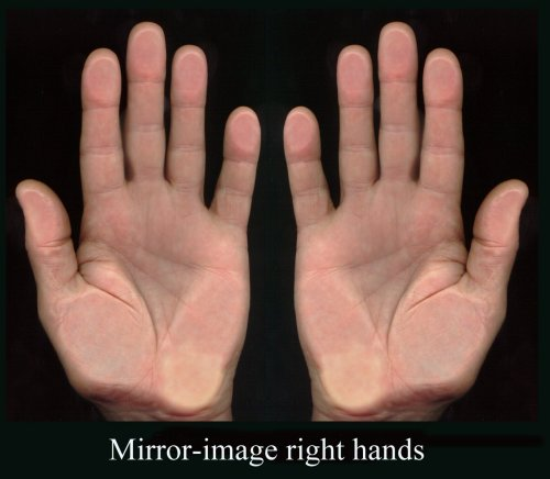 no 1415 right hand left hand