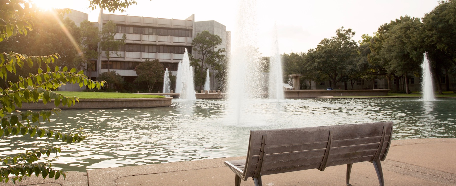 Forms and Procedures - University of Houston