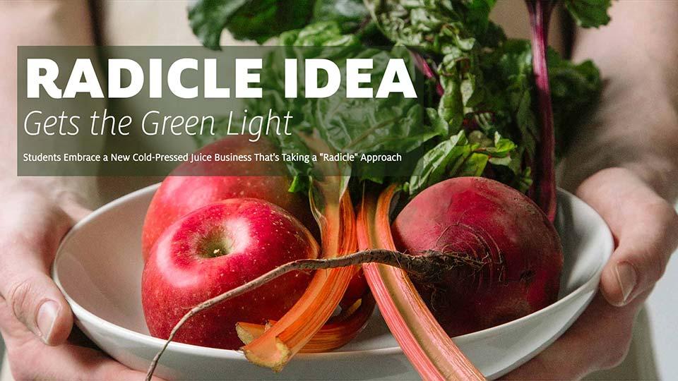 Radicle Idea