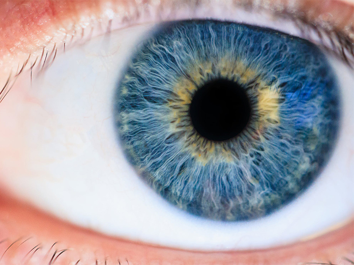 a new environment for repairing eyes